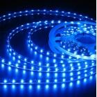 LED лента SMD 3528, синя, водоустойчива, IP65, 12V DC, 60LED/m, 5m, 4.8W/m